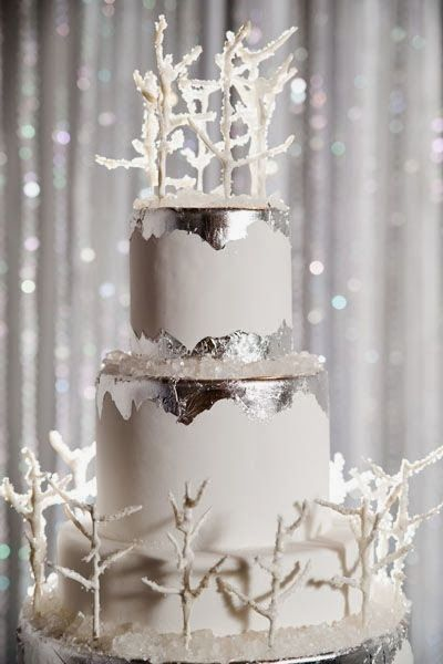 winter wonderland wedding cake pictures winter wedding cakes we love17 savvy chic avenue 27573
