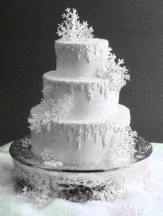 winter themed wedding cakes photo gallery winter wedding cakes we savvy chic avenue 27549